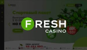 kazino fresh